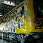 DSCF0883