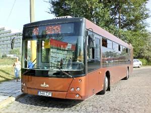 ratc constanta autobuz mazare maz
